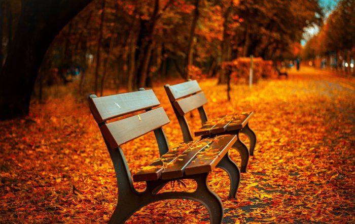Jesen - prehrana s Ayurvedom Rijeka, radionica, CroSoul, Sanus vita, Larisa Čižmešija, Mariza Butorac