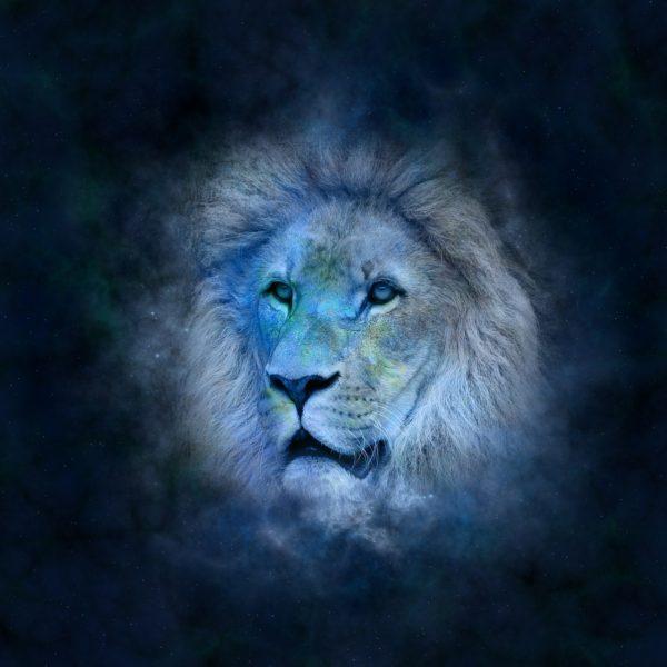 Sunce u vedskoj astrologiji - predstavlja božansko u nama i pokauje naše tijelo, Ego, osjećaj svrhe i Svijetlosti naše Duše.