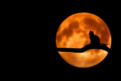 chandra, mjesec, vedska astrologija, jyotish, sanus vita, zagreb, larisa cizmesija,